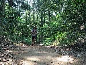 Musclez votre coeur durant votre entrainement trail ! © Dollarphoto
