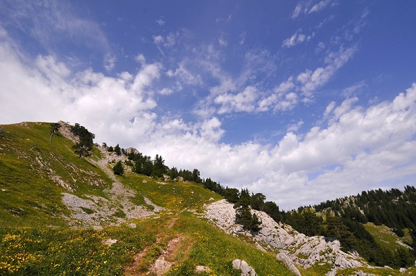 Trail de faverges