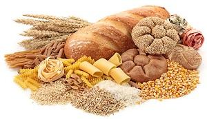 nutrition sportive et glucides