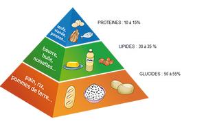 macro-nutriments-sports